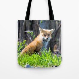 I Am the Fox. Who Are You? Tote Bag