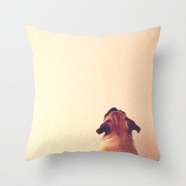 Pug staring up the wall Throw Pillow