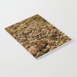 Clear waters Notebook