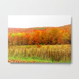 The Hills are on Fire Metal Print