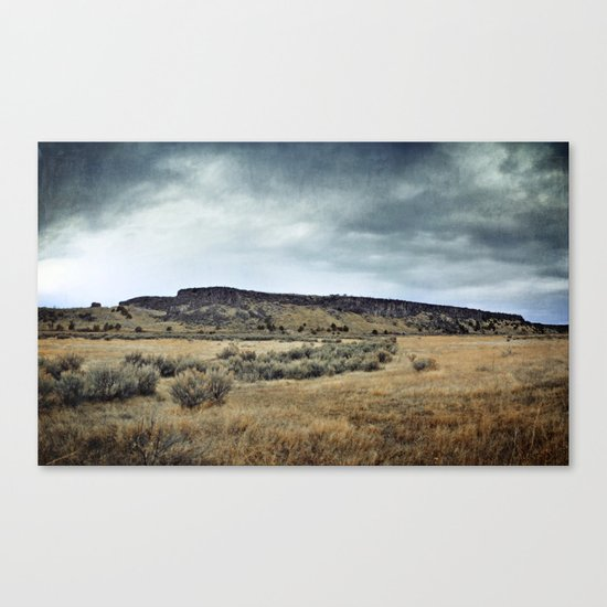 Buffalo Jump ! Canvas Print