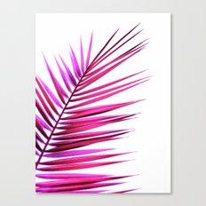 pink palm leaf II Canvas Print