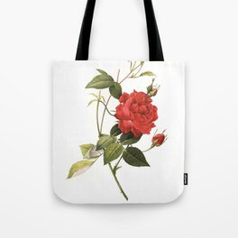 XXXL Resolution Rose | Antique Flower Illustrations Tote Bag