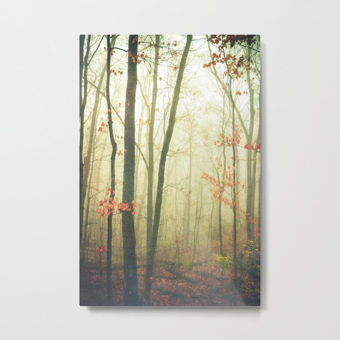 The Woods are Lovely Dark and Deep Metal Print