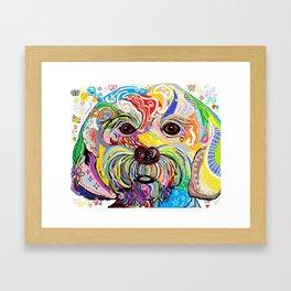 Maltese Puppy Framed Art Print