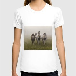 Curiosity II T-shirt