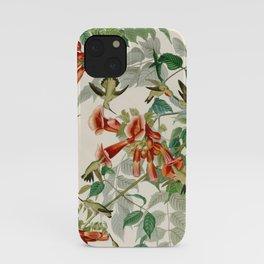 Ruby throated Humming Bird - Audubon's Print iPhone Case