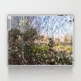 crack Laptop & iPad Skin