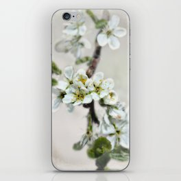 Scattered Kindness  iPhone Skin