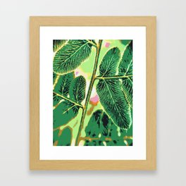 party fern Framed Art Print