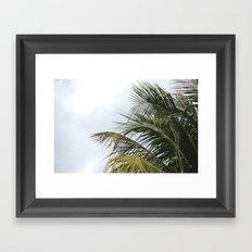 PALMY Framed Art Print