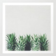 Pineapple Leaves Art Print