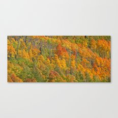 Colorado Colors 1 Canvas Print