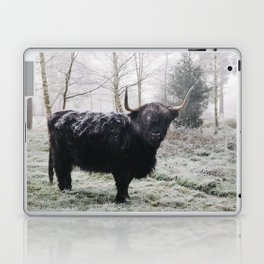 Black highland cow covered in frost on a winters morning. Norfolk, UK. Laptop & iPad Skin