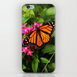 Buttefly Surprise iPhone Skin