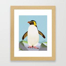 Rockhopper Penguin Framed Art Print