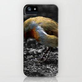 Sad Robin iPhone Case