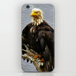 Eagle Drip Dry iPhone Skin