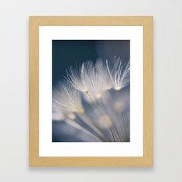soft lights Framed Art Print