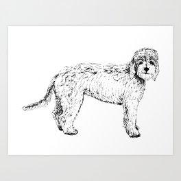 Labradoodle/Goldendoodle Ink Drawing Art Print