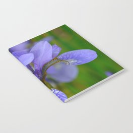 Siberian Iris by Teresa Thompson Notebook