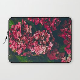 Christmas Hydrangea Red Floral Green Leaves Supple Flowers In The Garden Laptop Sleeve
