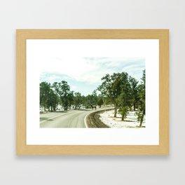 Elk in the Road Framed Art Print