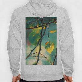 Son of the Forest Hoody