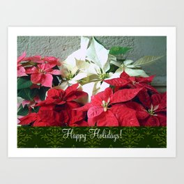 Mixed color Poinsettias 3 Happy Holidays S6F1 Art Print