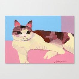 Cat healed Canvas Print
