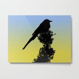 Black-billed Magpie Silhouette at Sunrise Metal Print