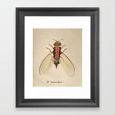 urban Bug #2 Framed Art Print
