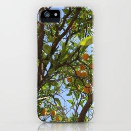 Valencian Oranges iPhone Case