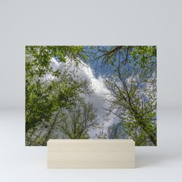 Clouds and trees tops Mini Art Print