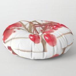 Scarlet Berry Floor Pillow