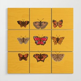 Butterflies Mounted on Yellow Wood Wall Art