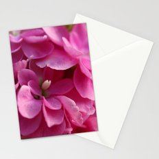 Pink Petals Stationery Cards