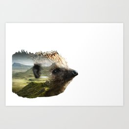 Hedgehog Double Exposure Art Print