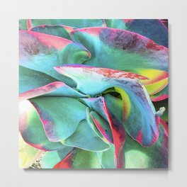 Fine Art Abstract Succulent In Exotic Rainbow Hues Metal Print