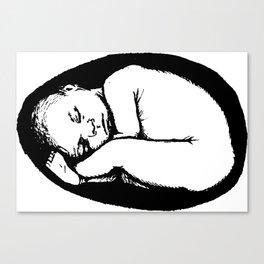 Baby Egg Canvas Print
