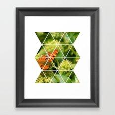 Butterfly Geometric Framed Art Print