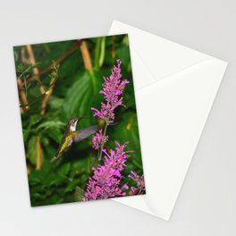 Hummingbird and agastache flower 60 Stationery Cards
