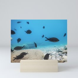 Under the Sea, Underwater Scene Sunlight, Fish Underwater Life. Mini Art Print