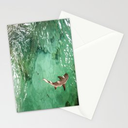 Look at the Shark Stationery Cards