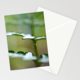 Fern Angles Stationery Cards