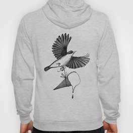 nuthatch delivers an ice cream cone Hoody