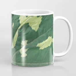 Elephant Ear Spotted Coffee Mug