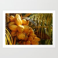 coconut wishes Art Prints featuring Coconut by William Klein