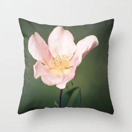 October flower Throw Pillow