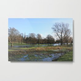 After the Snow Thaw Metal Print